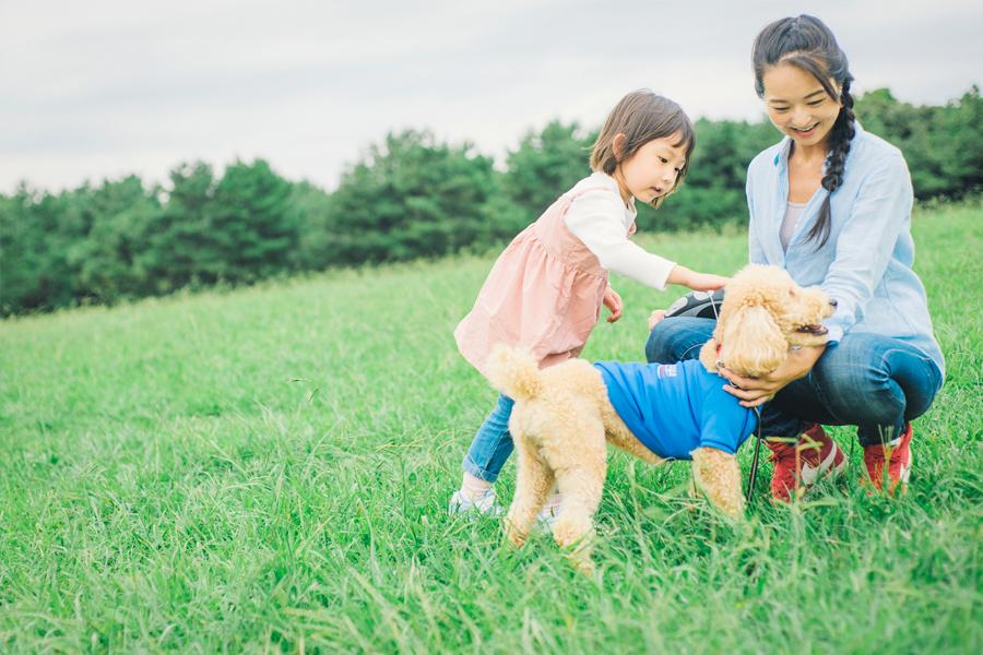 ペットと一緒に子育てする生活、賃貸でペットを飼う上で気を付けること